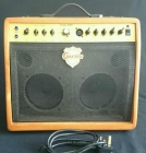 Crafter DSP-1 Combo 30 Watt Acoustic & Microphone Amplifier. SUPERB!!